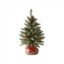 Martha Stewart Living 24 in. Indoor Pre-Lit Snowy Dunhill Fir Tabletop Tree with Clear Lights-9782300610 300339350