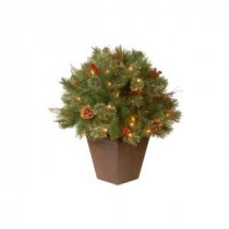 National Tree Company 24 in. Glistening Pine Topiary Bush with 50 Clear Lights-GN19-24TLO 204485834