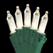 National Tree Company 50-Light Ready Lit Clear Bulb String Light Set-LS-879-50 205331443