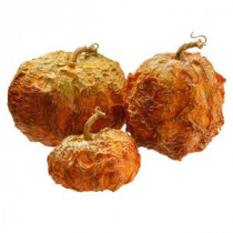 National Tree Company 8 in., 6 in. and 5 in. H Pumpkin Decor (Set of 3)-RAHV-16294NG 207123491