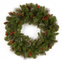 National Tree Company Crestwood Spruce 24 in. Artificial Wreath-CW7-10-24W-1 300182840