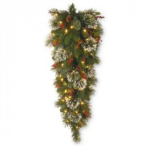 National Tree Company Wintry Pine 48 in. Teardrop with Battery Operated Warm White LED Lights-WP1-338-4TDB-1 300441265