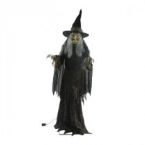 Home Accents Holiday 84 in. Lanky Witch-5124358 206766585