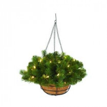 Martha Stewart Living 20 in. Downswept Douglas Fir Hanging Basket-9316800610 206497690