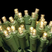 National Tree Company 50-Light LED Soft White Concave Bulb Light String Set-LS-877-50 205331469