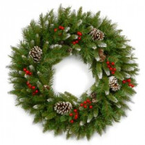 National Tree Company Frosted Berry 24 in. Artificial Wreath-FRB-24W-1 300182826